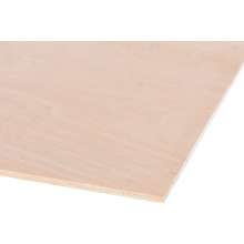 5.5mm 2440 x 1220 Hardwood Plywood